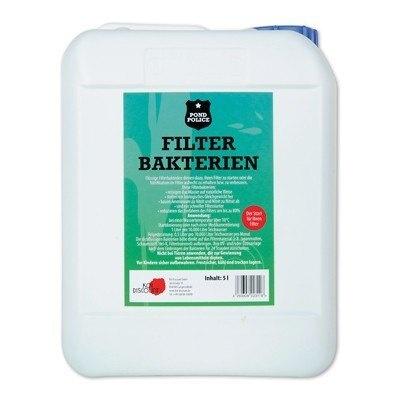 Filterbakterien